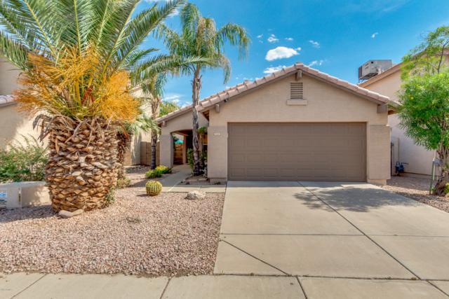 4031 E Anderson Drive, Phoenix, AZ 85032 (MLS #5927216) :: Realty Executives