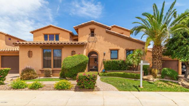 5636 E Libby Street, Scottsdale, AZ 85254 (MLS #5927221) :: CC & Co. Real Estate Team