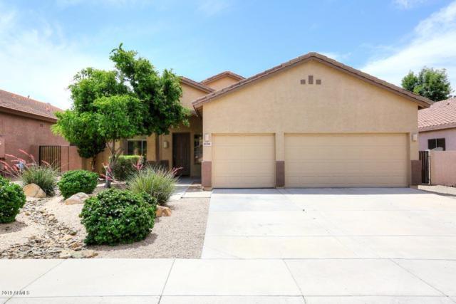 6761 W Lariat Lane, Peoria, AZ 85383 (MLS #5927224) :: CC & Co. Real Estate Team