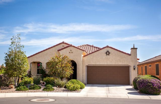 7600 W Cinder Brook Court, Florence, AZ 85132 (MLS #5927230) :: The Pete Dijkstra Team