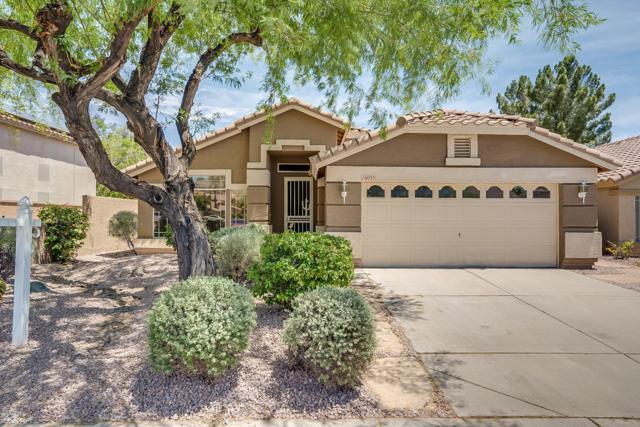 16035 S 10TH Place, Phoenix, AZ 85048 (MLS #5927253) :: CC & Co. Real Estate Team