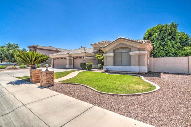 1525 E Oxford Lane, Gilbert, AZ 85295 (MLS #5927291) :: Revelation Real Estate
