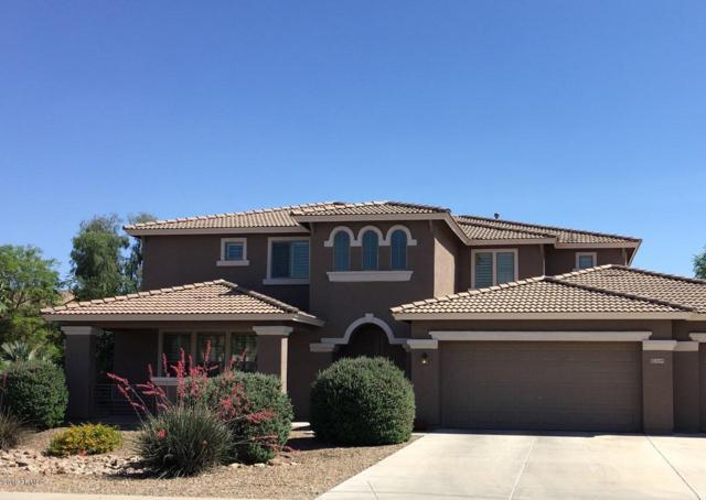 2649 E Cedar Place, Chandler, AZ 85249 (MLS #5927307) :: The Daniel Montez Real Estate Group