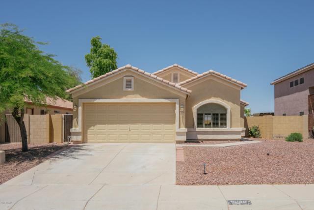 15146 W Fillmore Street, Goodyear, AZ 85338 (MLS #5927349) :: CC & Co. Real Estate Team