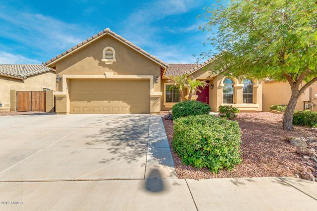 11321 E Sable Avenue, Mesa, AZ 85212 (MLS #5927352) :: Yost Realty Group at RE/MAX Casa Grande