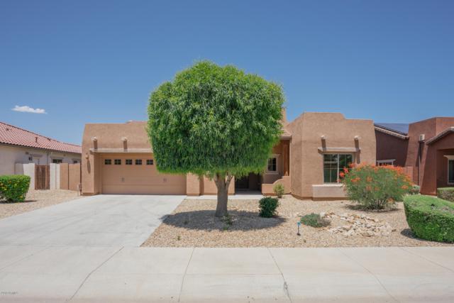 15632 W Meadowbrook Avenue, Goodyear, AZ 85395 (MLS #5927365) :: CC & Co. Real Estate Team