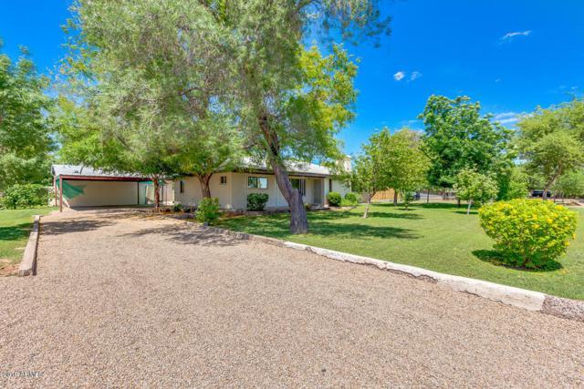 1802 W El Caminito Drive, Phoenix, AZ 85021 (MLS #5927372) :: CC & Co. Real Estate Team