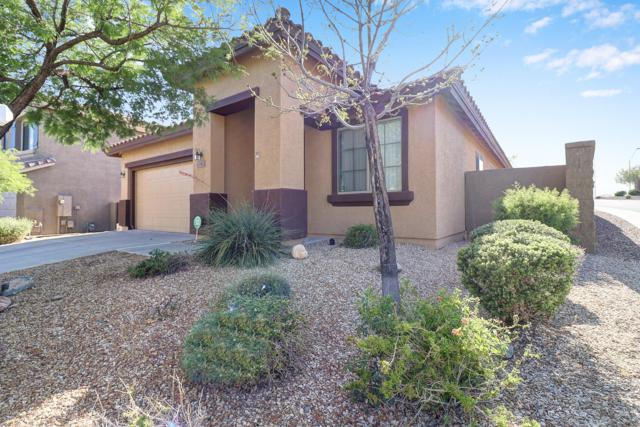 42942 N Vista Hills Court, Anthem, AZ 85086 (MLS #5927388) :: Santizo Realty Group