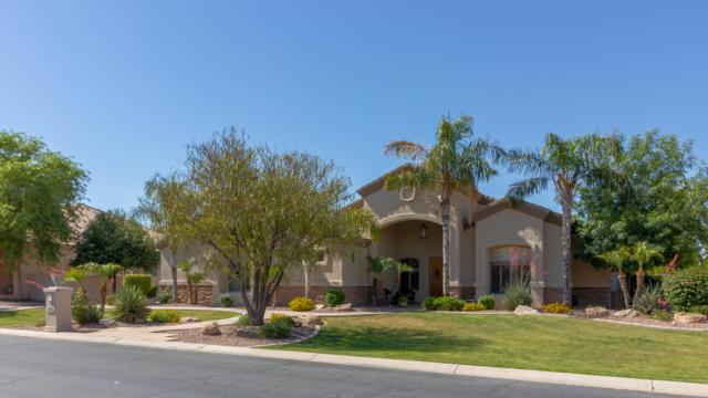 2856 E Waterman Court, Gilbert, AZ 85297 (MLS #5927391) :: The Kenny Klaus Team