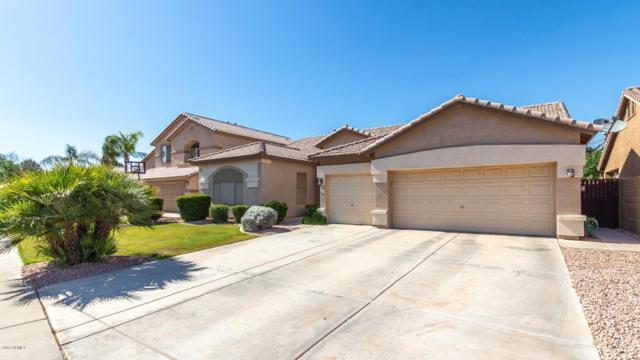 550 E Orchid Lane, Gilbert, AZ 85296 (MLS #5927416) :: CC & Co. Real Estate Team