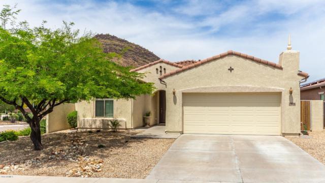 25506 N 54TH Lane, Phoenix, AZ 85083 (MLS #5927428) :: The Laughton Team