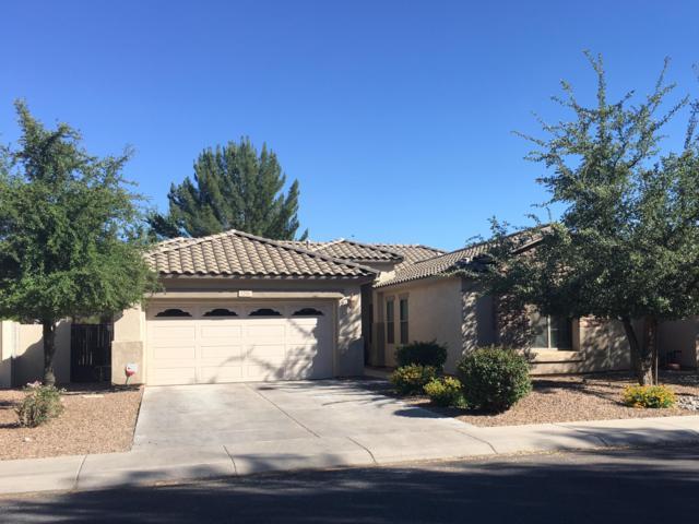 1251 E Mary Lane, Gilbert, AZ 85295 (MLS #5927441) :: CC & Co. Real Estate Team