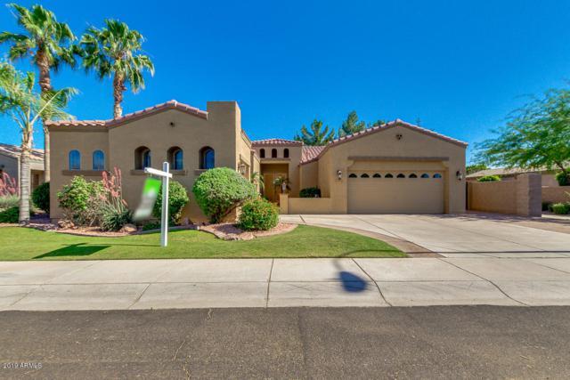 493 W Carob Drive, Chandler, AZ 85248 (MLS #5927451) :: Realty Executives