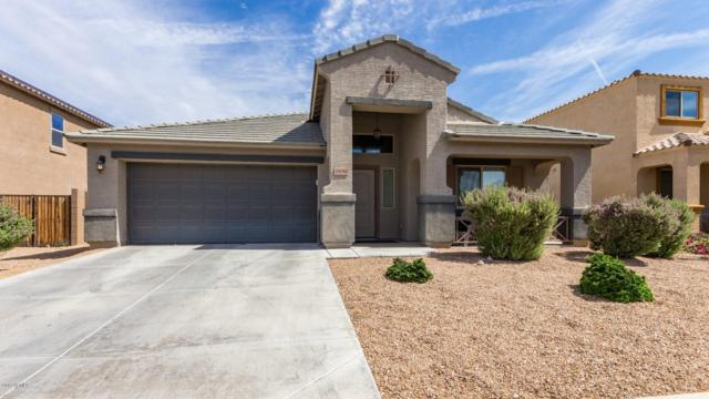 24780 W Wedgewood Avenue, Buckeye, AZ 85326 (MLS #5927452) :: CC & Co. Real Estate Team