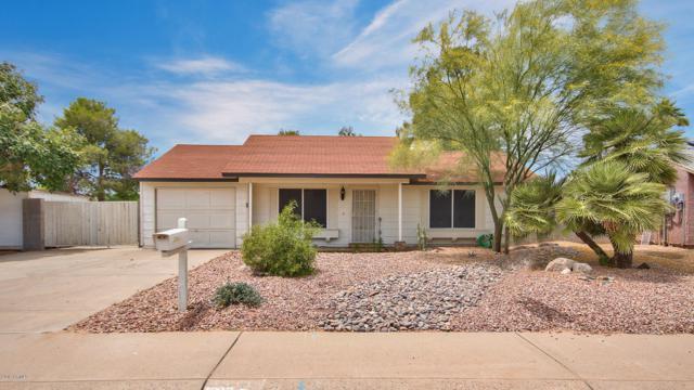 20438 N 14TH Drive, Phoenix, AZ 85027 (MLS #5927470) :: My Home Group