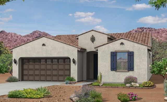 11122 N 190TH Avenue, Surprise, AZ 85388 (MLS #5927471) :: CC & Co. Real Estate Team