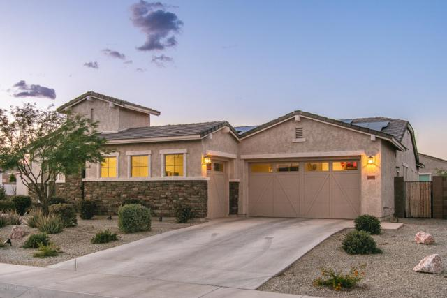 18414 W Verbena Drive, Goodyear, AZ 85338 (MLS #5927472) :: Brett Tanner Home Selling Team