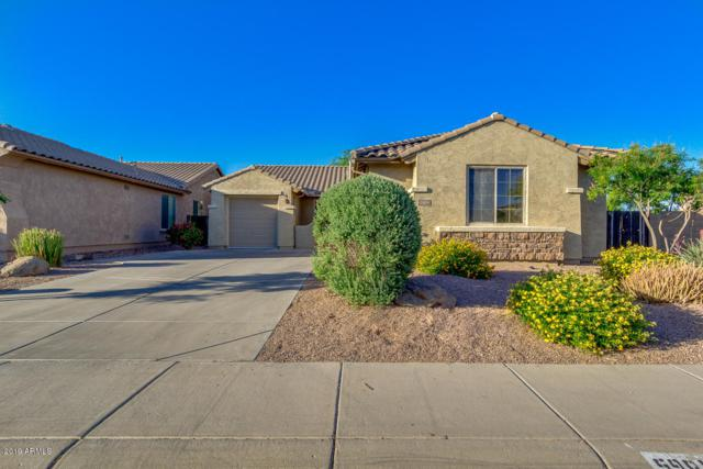 5988 W Yorktown Way, Florence, AZ 85132 (MLS #5927484) :: Occasio Realty