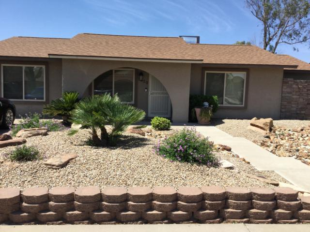 3420 E Helena Drive, Phoenix, AZ 85032 (MLS #5927489) :: CC & Co. Real Estate Team