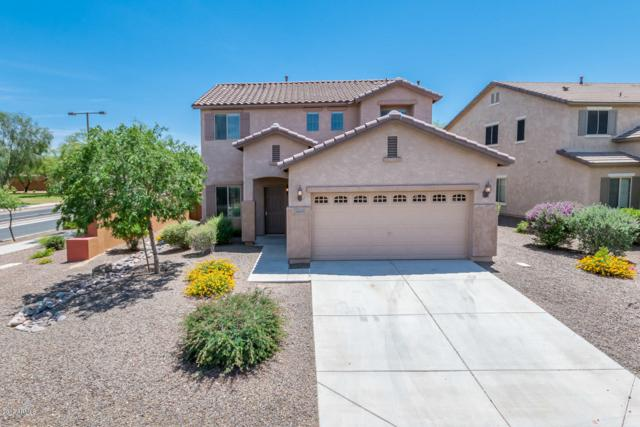 26043 W Potter Drive, Buckeye, AZ 85396 (MLS #5927498) :: The Results Group
