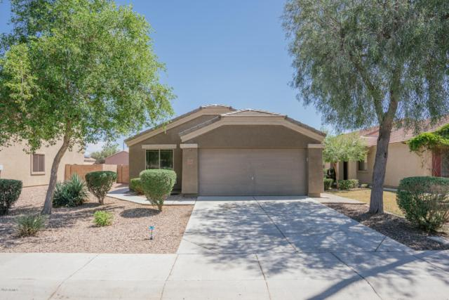23705 W Hidalgo Avenue, Buckeye, AZ 85326 (MLS #5927515) :: CC & Co. Real Estate Team