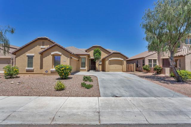 11910 W Daley Court, Sun City, AZ 85373 (MLS #5927523) :: CC & Co. Real Estate Team