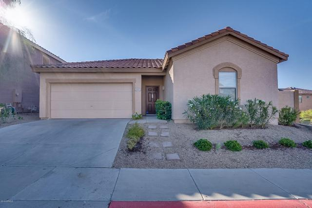 16219 S 17TH Drive, Phoenix, AZ 85045 (MLS #5927525) :: CC & Co. Real Estate Team