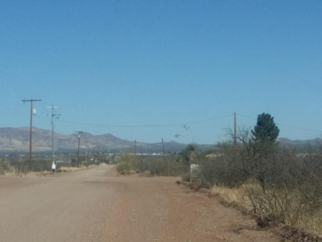 XXXX W Oak & Beki Lane Avenue, Douglas, AZ 85607 (MLS #5927529) :: RE/MAX Excalibur