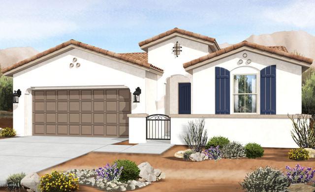 9723 E Tripoli Avenue, Mesa, AZ 85212 (MLS #5927540) :: Yost Realty Group at RE/MAX Casa Grande