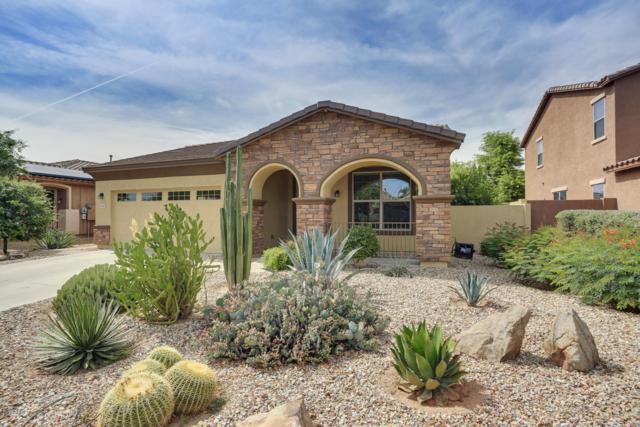 15069 W Glenrosa Avenue, Goodyear, AZ 85395 (MLS #5927542) :: CC & Co. Real Estate Team