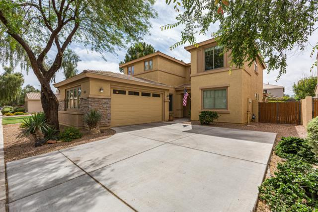 4663 E Cabrillo Drive, Gilbert, AZ 85297 (MLS #5927544) :: CC & Co. Real Estate Team