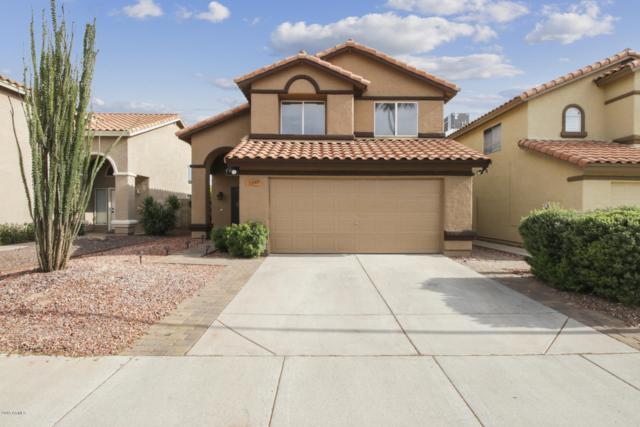 1247 E Muriel Drive, Phoenix, AZ 85022 (MLS #5927554) :: CC & Co. Real Estate Team