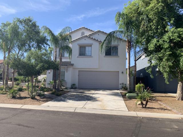 533 E Maddison Street, Queen Creek, AZ 85140 (MLS #5927570) :: CC & Co. Real Estate Team