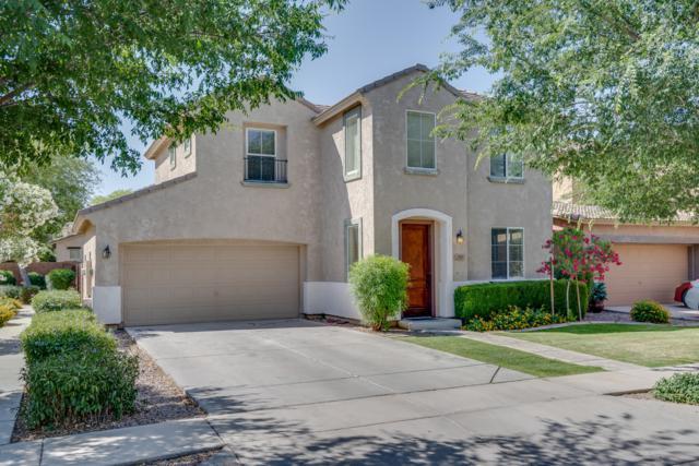 4333 E Oakland Street, Gilbert, AZ 85295 (MLS #5927594) :: Revelation Real Estate