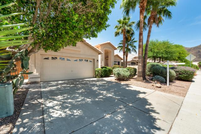 5322 W Tonopah Drive, Glendale, AZ 85308 (MLS #5927606) :: Arizona 1 Real Estate Team