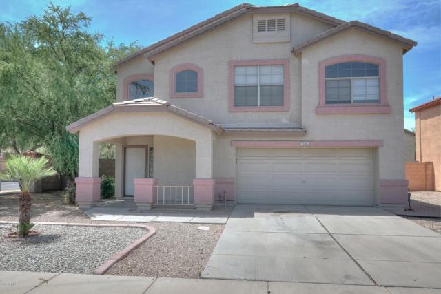 1795 E Ivanhoe Street, Gilbert, AZ 85295 (MLS #5927610) :: CC & Co. Real Estate Team