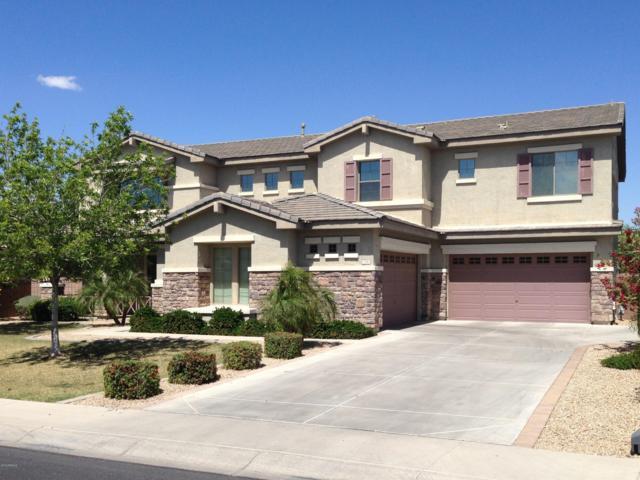 734 E Elgin Street, Gilbert, AZ 85295 (MLS #5927612) :: CC & Co. Real Estate Team