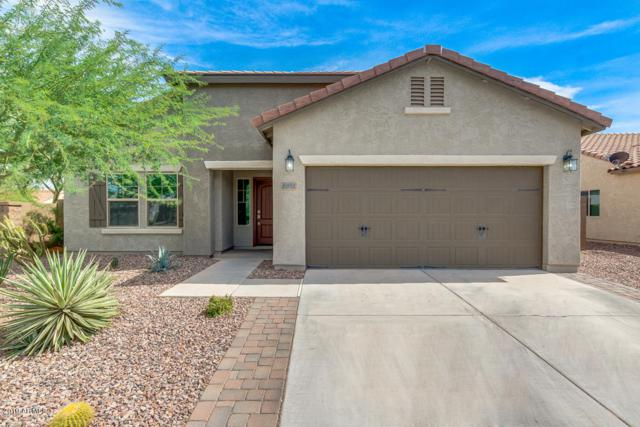 6491 W Desert Blossom Way, Florence, AZ 85132 (MLS #5927619) :: The Pete Dijkstra Team