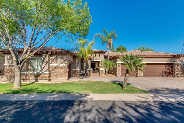 1941 S Santa Anna Drive, Chandler, AZ 85286 (MLS #5927637) :: Realty Executives