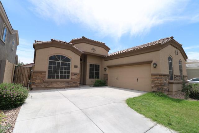 881 E Rawhide Court, Gilbert, AZ 85296 (MLS #5927644) :: CC & Co. Real Estate Team