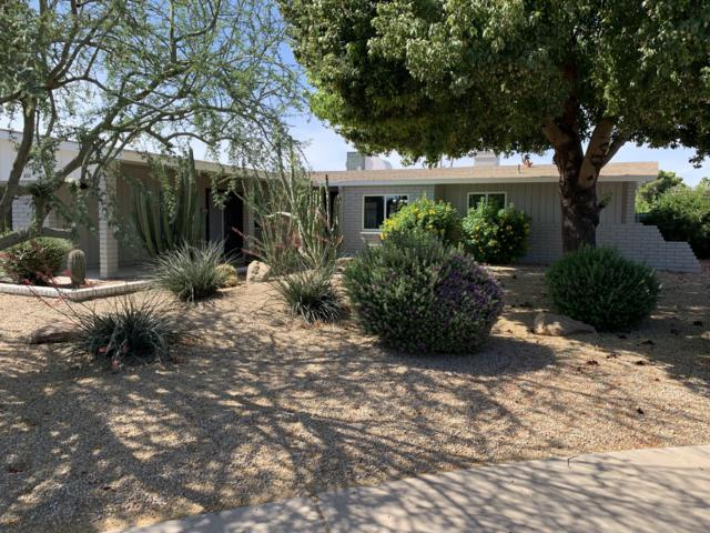 4316 W Las Palmaritas Drive, Glendale, AZ 85302 (MLS #5927667) :: Revelation Real Estate