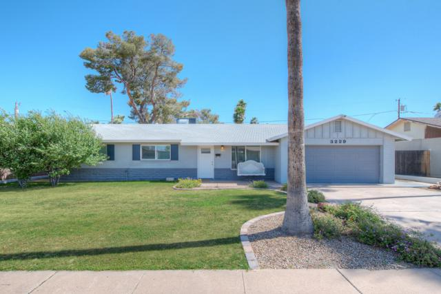 3229 E Roveen Avenue, Phoenix, AZ 85032 (MLS #5927686) :: CC & Co. Real Estate Team