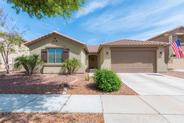 14536 W Poinsettia Drive, Surprise, AZ 85379 (MLS #5927710) :: CC & Co. Real Estate Team