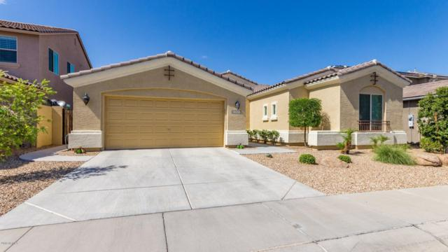 18230 W Young Street, Surprise, AZ 85388 (MLS #5927725) :: Homehelper Consultants