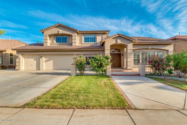 1695 E Mead Drive, Chandler, AZ 85249 (MLS #5927751) :: CC & Co. Real Estate Team
