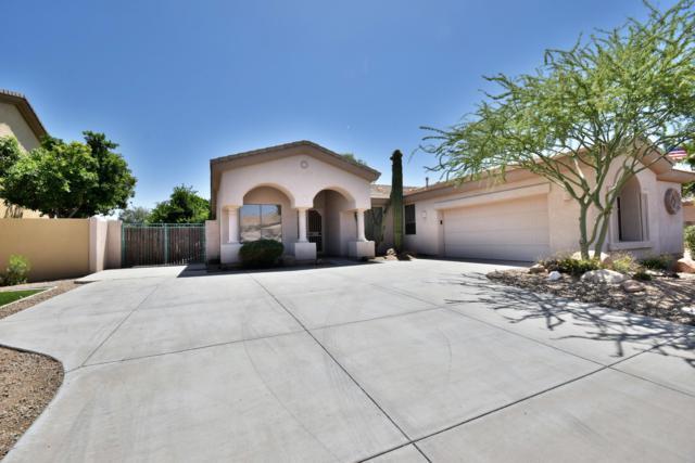 14579 W Hillside Street, Goodyear, AZ 85395 (MLS #5927752) :: CC & Co. Real Estate Team