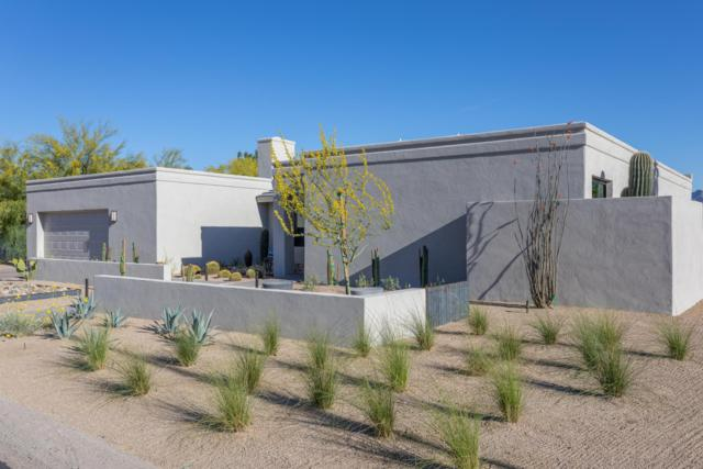 4623 E Fanfol Drive, Phoenix, AZ 85028 (MLS #5927755) :: CC & Co. Real Estate Team