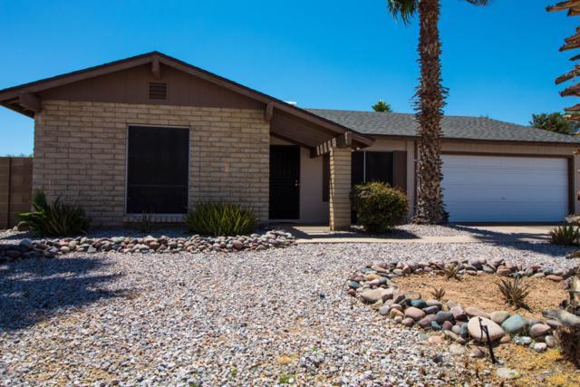 19030 N 13TH Drive, Phoenix, AZ 85027 (MLS #5927758) :: Devor Real Estate Associates