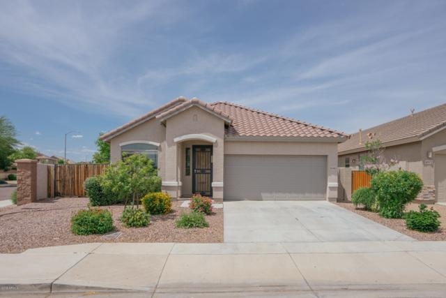 10382 W Los Gatos Drive, Peoria, AZ 85383 (MLS #5927764) :: The Results Group