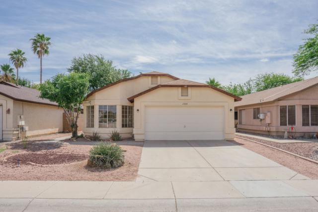 17125 N Larkspur Lane, Surprise, AZ 85374 (MLS #5927768) :: CC & Co. Real Estate Team